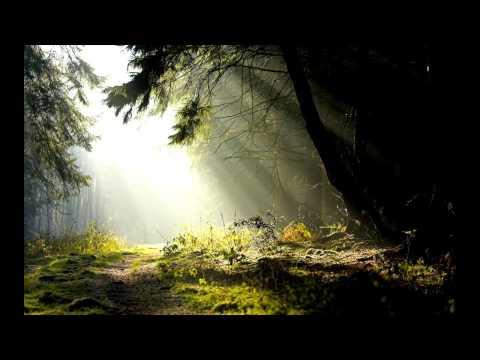 Acetate - Rays of Sun (HD)