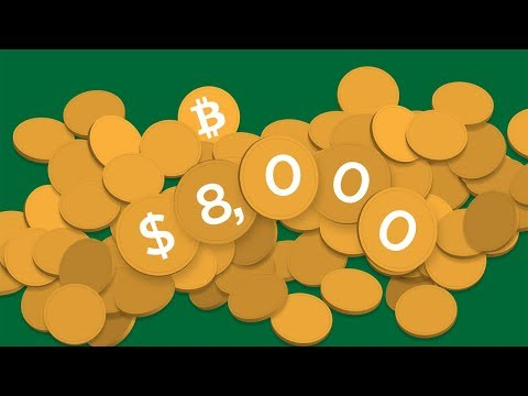 Bitcoin $8,300 VS Bitcoin Cash (Roger Ver Chose BTC CASH)