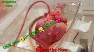 New sed heart touching whatsapp status and Facebook status