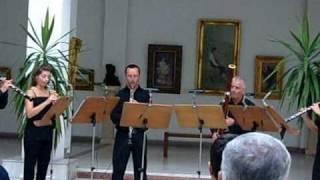 "Oboe Ensemble ""Pavel Tornea"" G F Haendel Water Music - Ouverture"