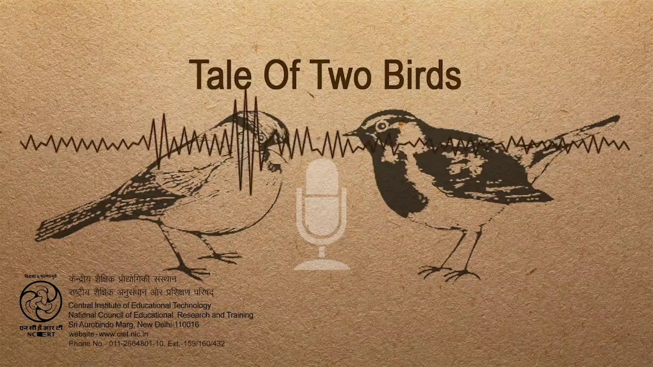 CBSE 6th A Tale of Two Birds Summary