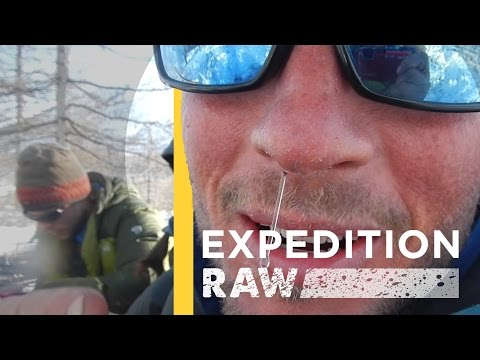 Wolverine Research Isn't Pretty | Expedition Raw