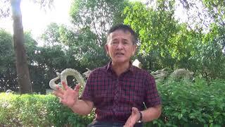 """Trần Nhật Quang, vì sao ông """"trở cờ""""?"""