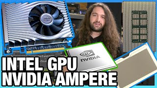 HW News - Intel Xe HP GPU, NVIDIA Ampere GPUs, AMD CPU Sales Up, Semi-Custom Down
