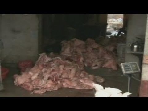 China fake meat scandal: Crime ring busted after selling rat meat as mutton