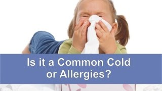 Is it a Common Cold or Allergies?