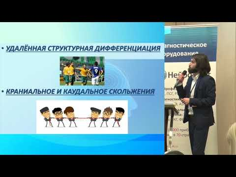 Д.М. Сударкин Нейродинамика в лечении туннельных невропатий