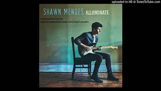 Video Shawn Mendes - Hold on (lyrics) download MP3, 3GP, MP4, WEBM, AVI, FLV September 2018