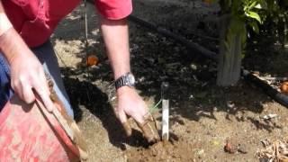 Installing a WATERMARK Sensor on PVC in Hard or Rocky Soil