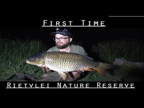 Carp Fishing New Waters - Rietvlei Nature Reserve