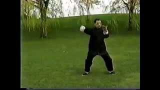 Wu Style Tai Chi ( 吳式太極拳) - 鄭榮光學生
