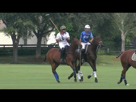 The Villages Polo