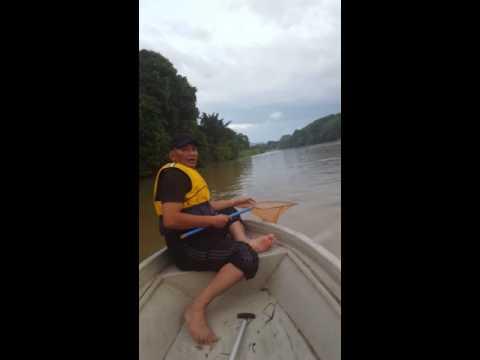 Fishing At Sungai Perak.