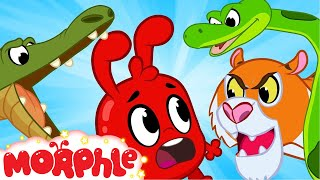 Morphle and The Scary Animals - Morphle | Cartoons For Kids | Mila and Morphle | BRAND NEW | Kids