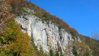 Alphornmesse  - Introitus -