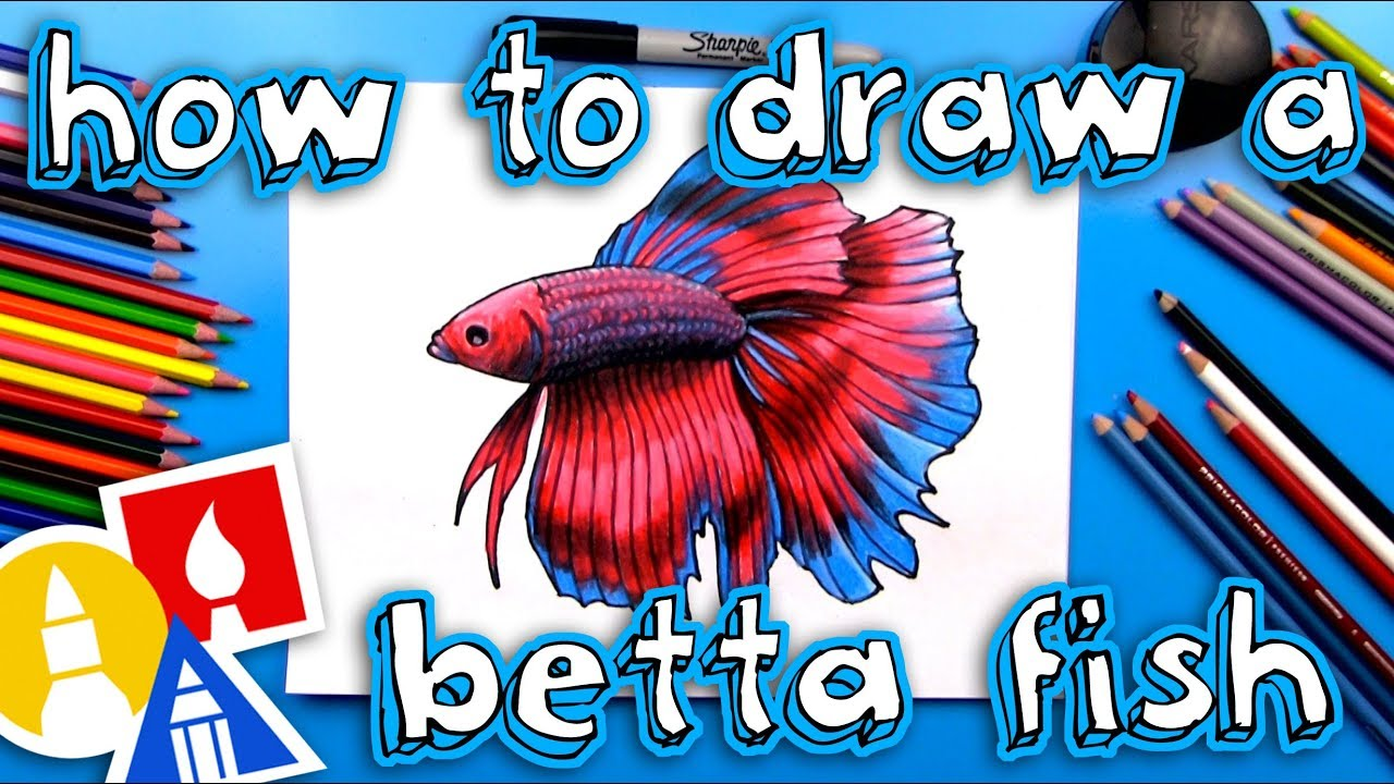 How To Draw A Realistic Betta Fish Siamese Fighting Fish Youtube