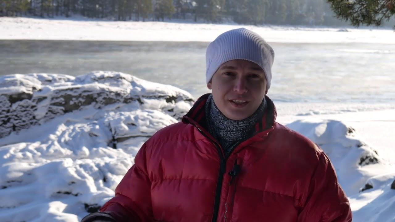 Лев Гороскоп на неделю с 7 по 13 января 2019