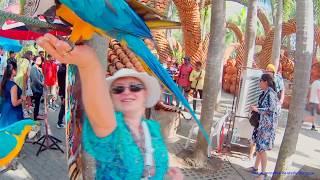 Тайланд. Плюсы и минусы. Экскурсии, достопримечательности. Отзыв об отдыхе в Королевстве Тайланд.(, 2017-03-19T09:59:17.000Z)