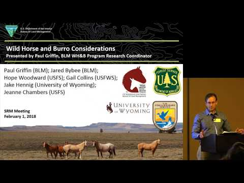 Wild Horse and Burro Considerations