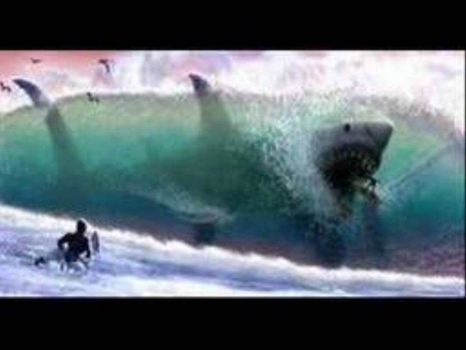 THE MEGALADON [STILL ALIVE?] - YouTube