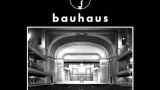 Bauhaus - Hair of the Dog [Alternate Album Mix] [HQ 320 kbps]