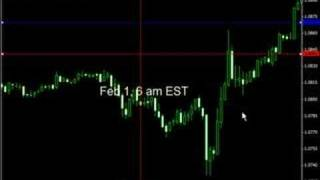 Forex Signals - 1000+ pips in January