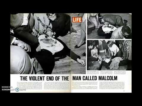 Malcolm X and the Black Power Movement