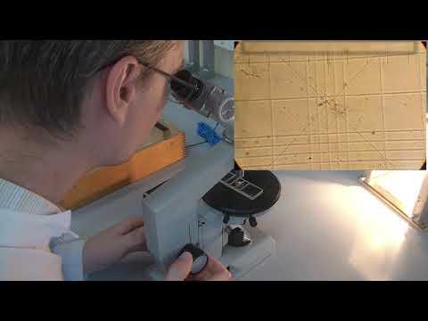 Как считать увеличение микроскопа