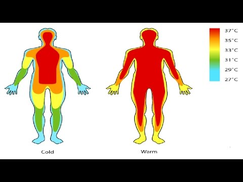 Body Temperature And Sex
