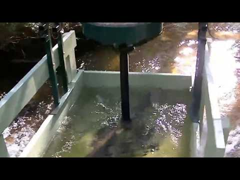Vertical turbine hydro generator system. Low rpm permanent magnet generator, home made