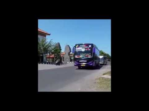 WE ARE NUMBER ONE BUT PLAYED BY OM TELOLET OM BUS HORN