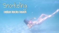Snorkeling at Indian Rocks Beach - St. Petersburg Florida 2019