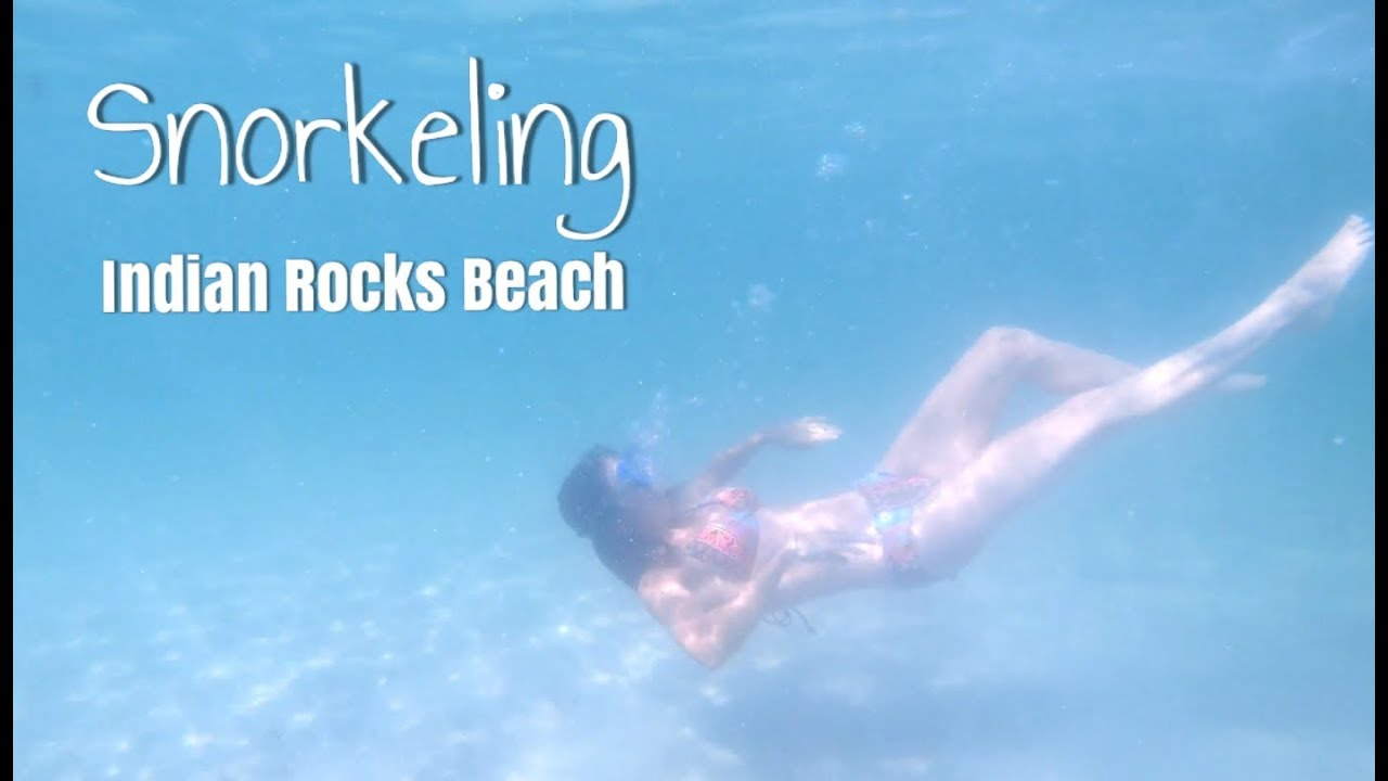 Snorkeling At Indian Rocks Beach St