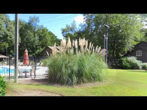 Real estate for sale in Savannah Georgia - MLS# 148332