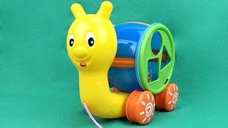 Carros para Niños - Caracol - Juguetes para Niños