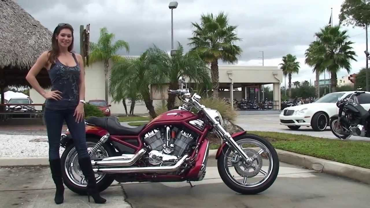 Used Harley Davidson Cvo For Sale On >> Used 2005 Harley Davidson CVO V-Rod Motorcycle for sale - YouTube
