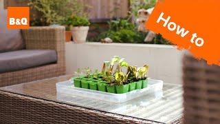 How to make a Mini Greenhouse