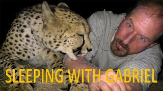 Sleeping Outside With Gabriel The Cheetah | BIG CAT Gets Stomach Ache From Eating Foam Mattress