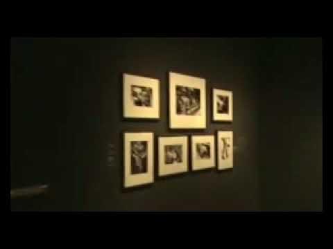 Exposición ED VAN DER ELSKEN, en Fundación MAPFRE