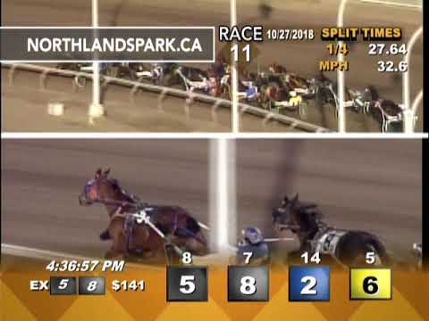 Northlands Park Racetrack & Casino