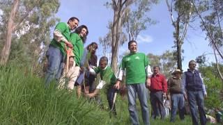 Día del Árbol, Campaña de Forestación Metepec 2016