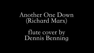 Another One Down - Richard Marx (flute cover)