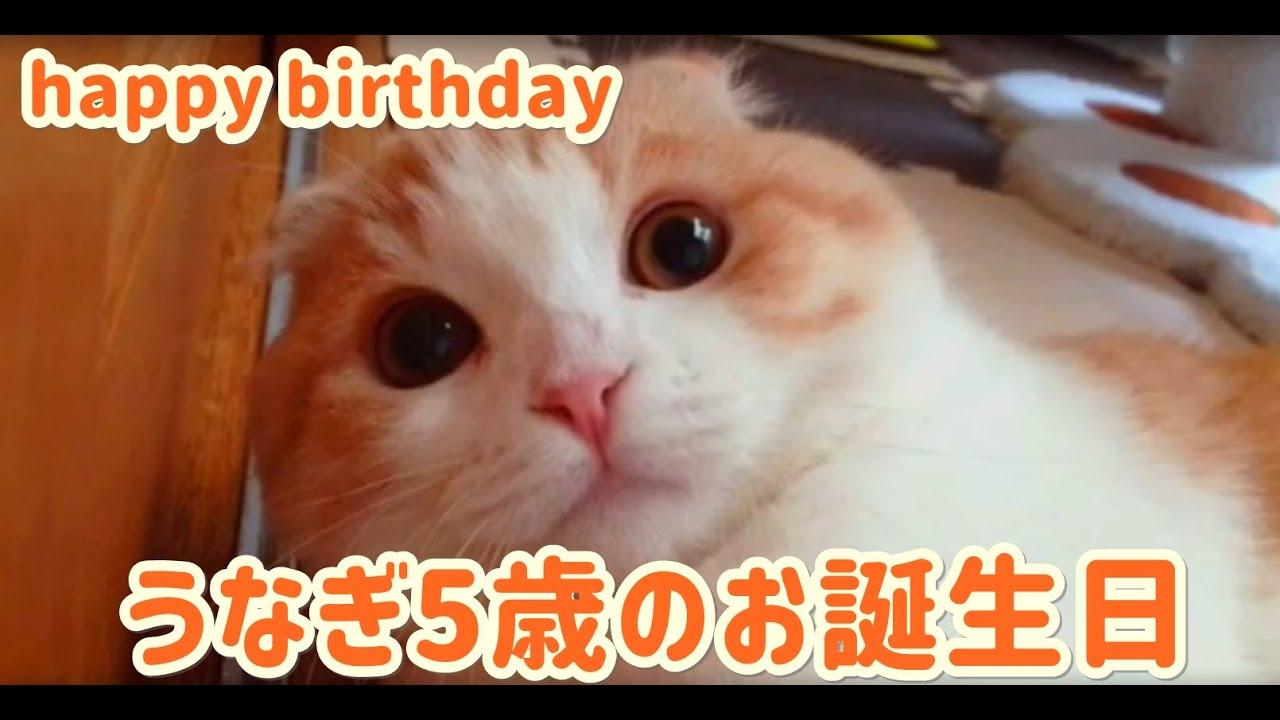 うなぎ5歳のお誕生日!