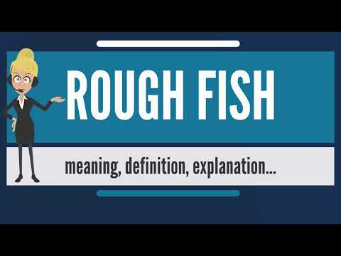 What is ROUGH FISH? What does ROUGH FISH mean? ROUGH FISH meaning, definition & explanation