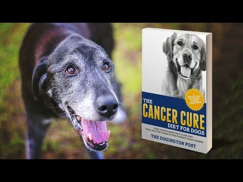 The Cancer Cure Diet for Dogs - Indiegogo
