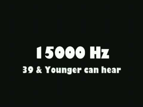 8000HZ - 22000HZ