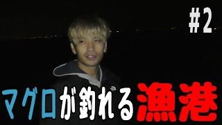 マグロが釣れる漁港で大物を狙う #2 【ミジュン釣り】 thumbnail