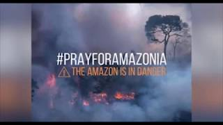#AmazonRainforest The Amazon Rainforest Is BURNING DOWN