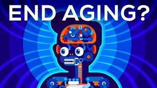 Why Age? Should We End Aging Forever? by : Kurzgesagt – In a Nutshell