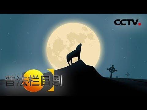 《普法栏目剧》 20171223 独狼(上) | CCTV法制